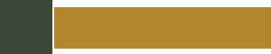 Phoenix Medical Associates Logo